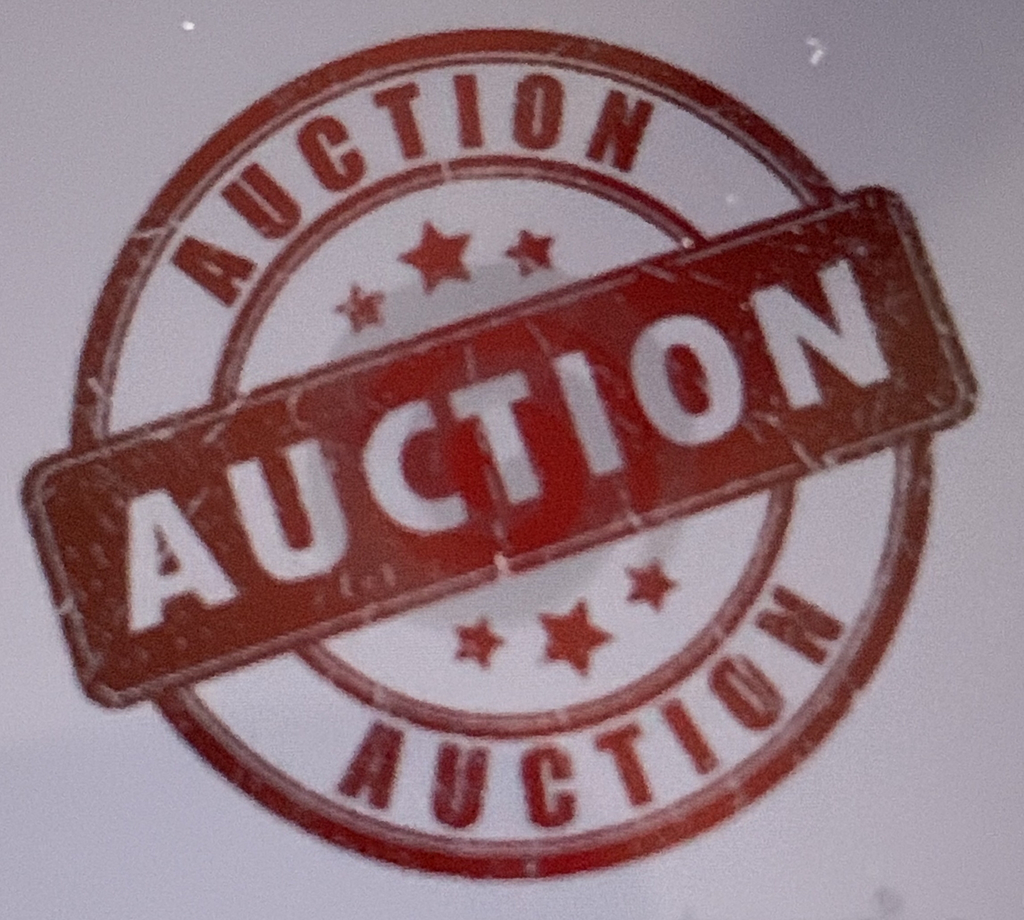Come to the school auction- August 24 at 10:00 AM.