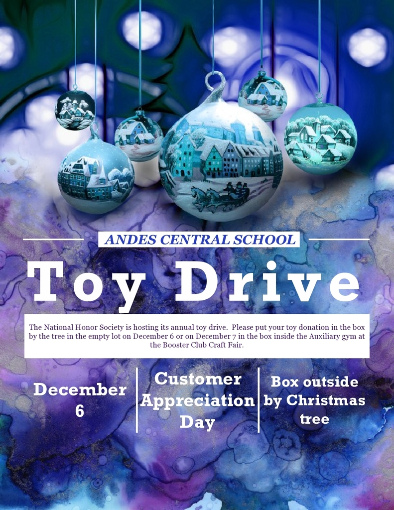 Andes Central National Honor Society Toy Drive